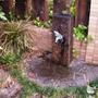 蛇口・水栓